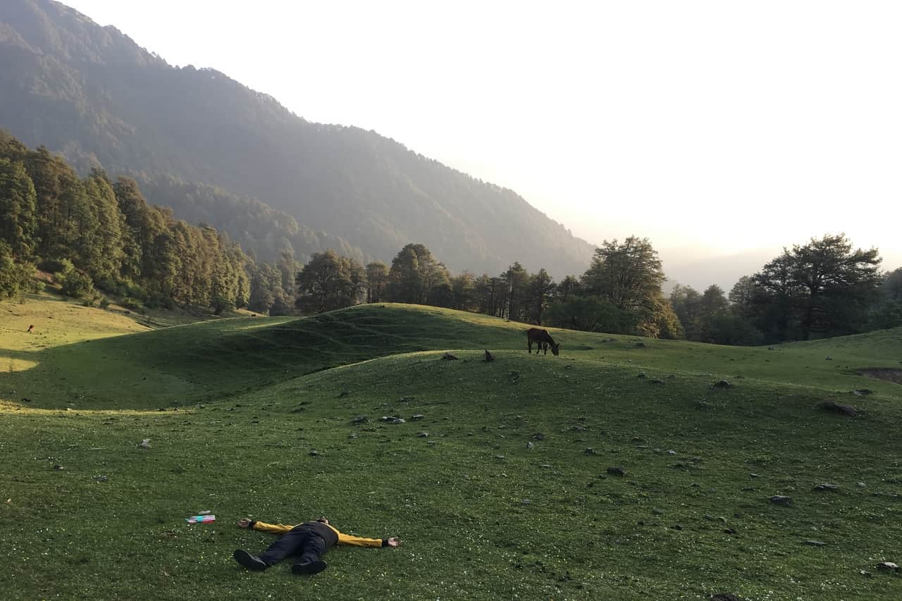 A man is skygazing while an animal grazes in the background on a meadow surrounded by mountains.