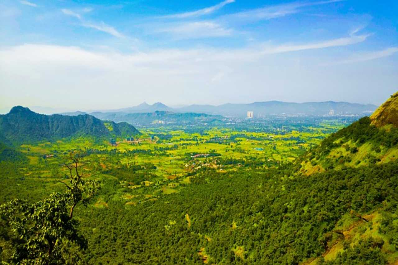 A sea of green with hills on the horizon