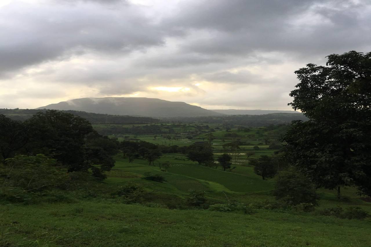 Landscape of a green hillside under a cloudy sky.