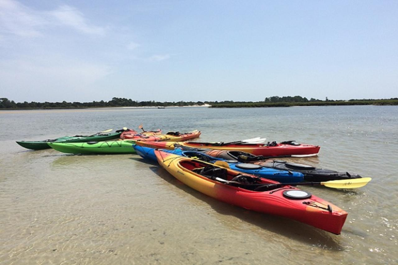Couple of kayaks parked on the sandy shore.