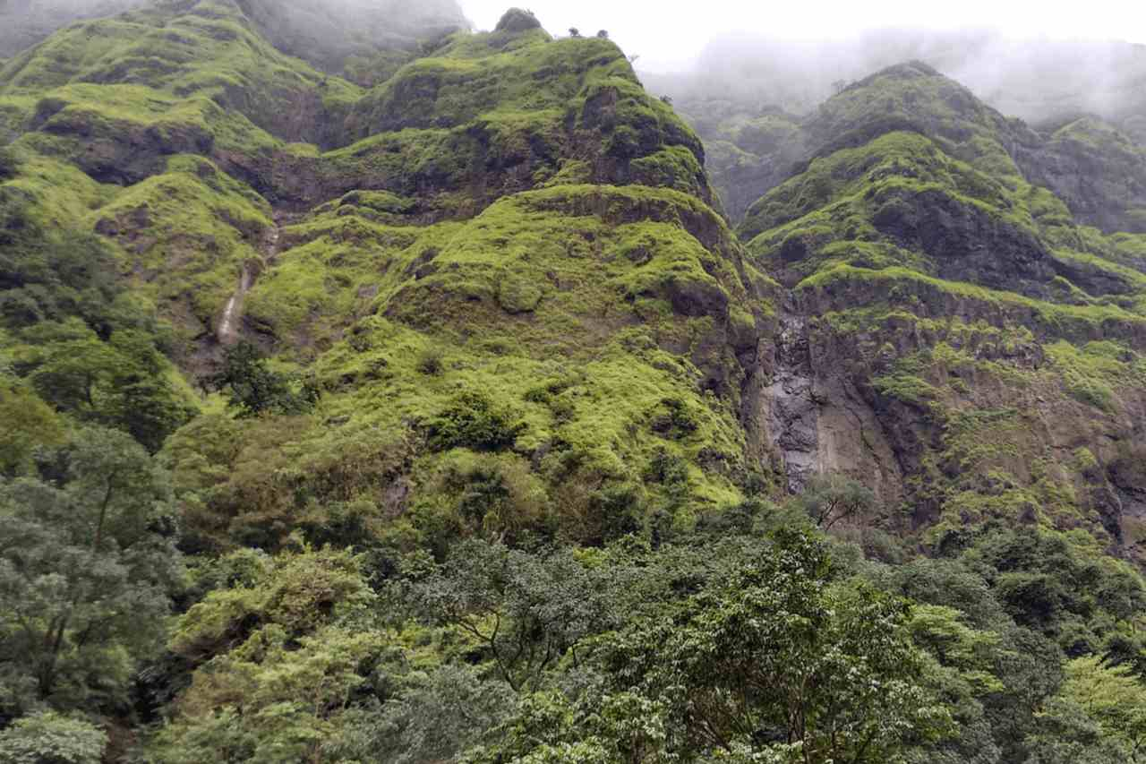 Shot of rocky cliff covered in greenery against misty sky.