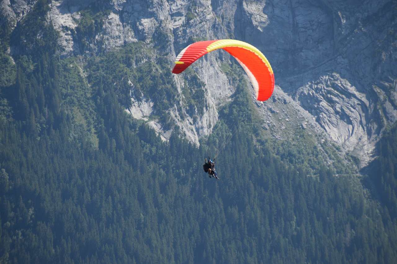 A paraglider flies past a forested mountainside.
