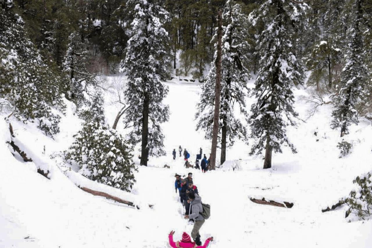 Trekker in pink winter jacket sliding down snow slope on Brahmatal trek