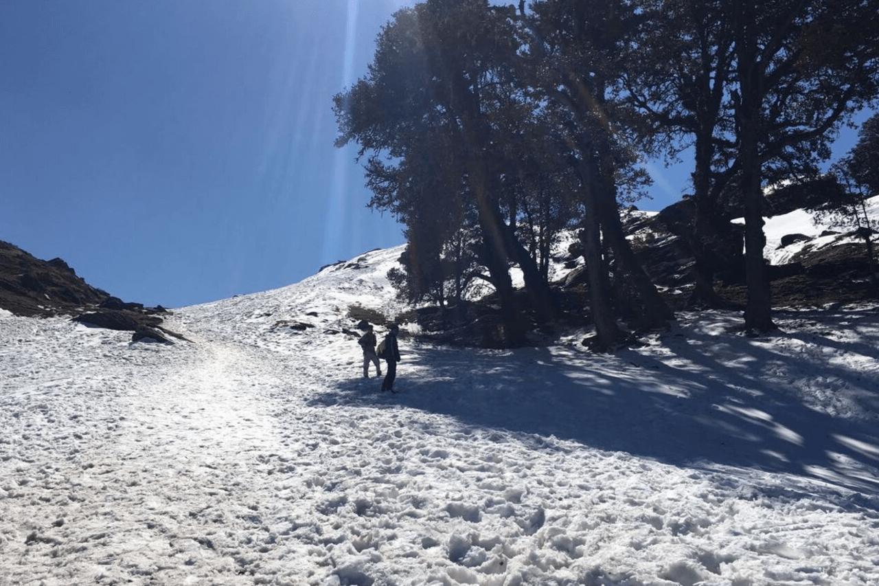 Trekkers walking into the distance on the Chopta trek.