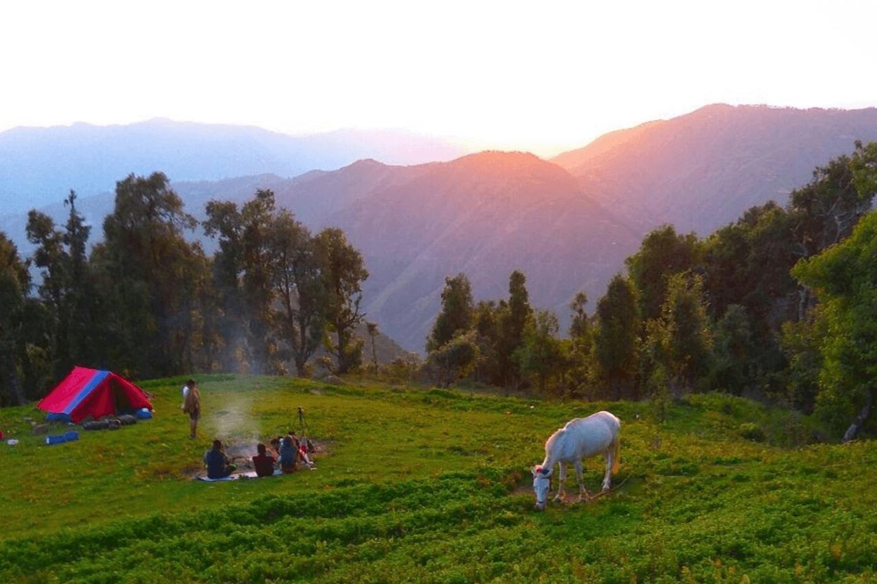 A campfire burns while a horse grazes beside a tent