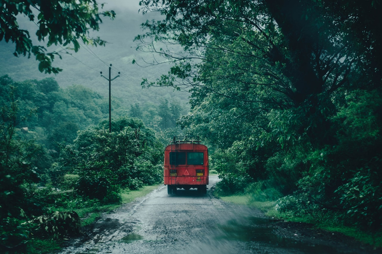 A red bus rumbles through greenery on a rainy day