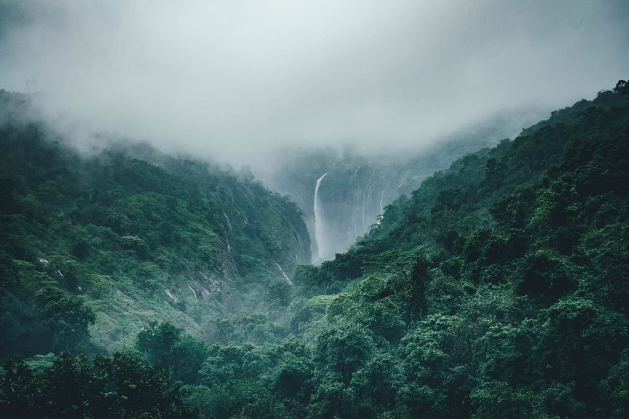 Tall waterfall in the middle of green forest.