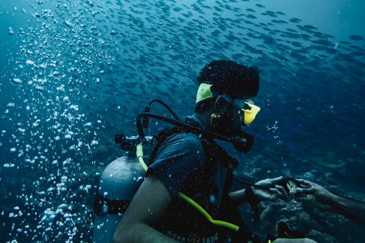 Scuba diver hovers in the midst of a school of fish