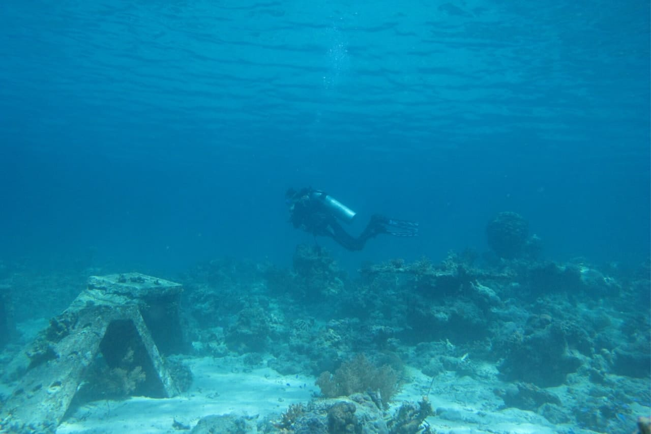 Scuba diver floats over coral reef