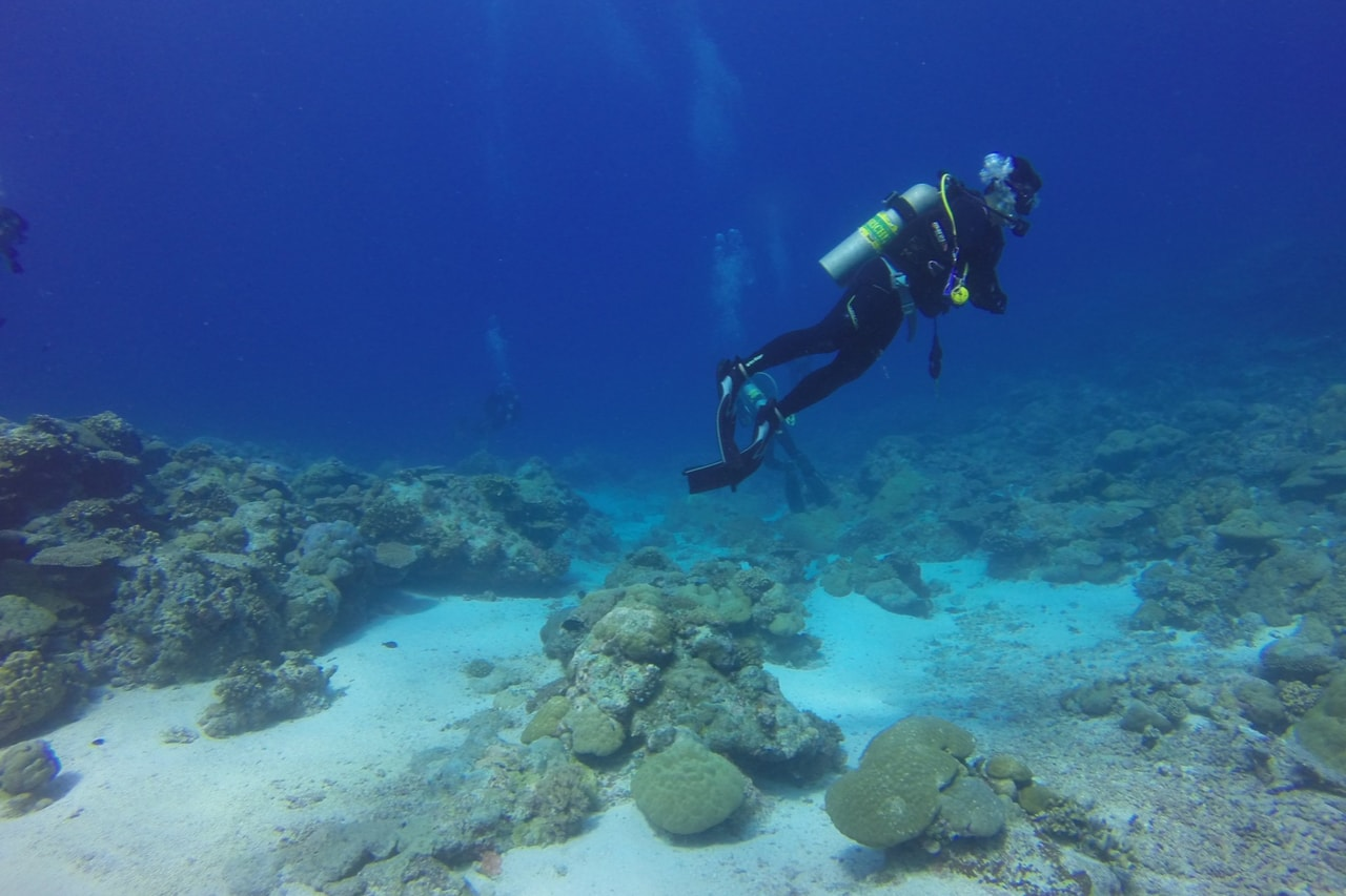 Solo scuba diver hovers over coral on sandy bottom.